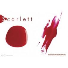 Скарлетт (№017)