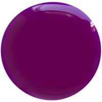 Цветной гель лак EVO «ДИАНА»