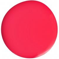 Цветной гель лак EVO «Пенни»
